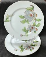 Roselyn China Dogwood 10-1/4 Dinner Plate Set of (2) Multicolor Floral Japan
