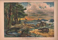 1878 lithographie originale dinosaures Mésozoïque Belodon Mastodonsaurus gravure