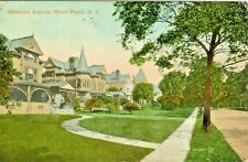 White Plains NY 1910  Homes on Hamilton Avenue