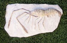 """Garden Path Stepping Stone Wall Plaque Crawling Lobster sand beach New 12"""" x 6¾"""""""