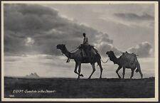 AX2609 Egypt - Eventide in the Desert - Cartolina postale - Postcard
