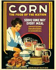 Vintage Rare   POSTER  CORN  Agriculture 1920's  Farming  Iowa