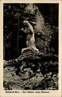 Rübeland Harz alte DDR s/w AK 1953 Statue Murmeltier Dem Letzten seines Stammes