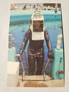 Vintage Postcard - Marineland Diver Exiting the Oval Tank 1960s - S. Crocker Co.
