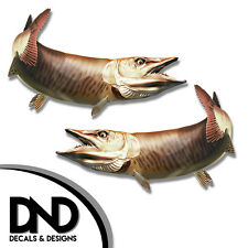 """Tiger Musky - Fish Decal Fishing Tackle Box Bumper Sticker """"5in SET"""" F-0910 D&"""