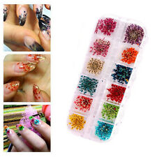 Women DIY Real Dried Flowers For UV Gel Acrylic Nail Art Tips Beauty Manicure US