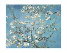Blue Floral Reproduction Art Prints