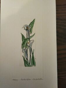 "Linda Cullers - Signed Hand Colored Intaglio Print ""Calla Lilies""  42/350"