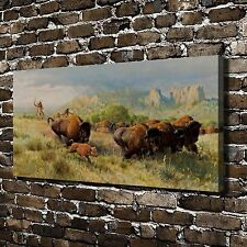 Indian Buffalo Chase Paintings HD Print on Canvas Home Decor Wall Art Pictures