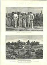 1890 Mr Stanley Masai Warriors Last Camp Africa