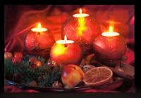 LED Christmas Wall Hanging - Candle & Fruit