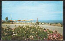 USA. The Log Cabin, Holyoke, Massachusetts . Unposted postcard