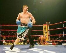 Ricky Hatton Boxing Great 10x8 Photo