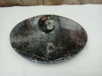 Orthoceras Sculpture Grey Fossil Marble Stone  12 X 9cm Ammonite Dish