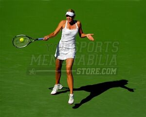Maria Sharapova return with shadow shrug 8x10 11x14 16x20 photo 705