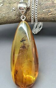 With insects 8,9 gr Genuine Natural Citrine Baltic Amber Pendant