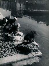 ORTA c. 1950 - Lavandières au Lac Italie - DIV 2024