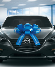 Large Car Bow, Congratulations 2020 Graduate, Magnetic Back, No Scratch
