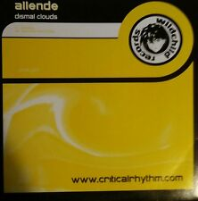 "Allende  ""Dismal Clouds""  * pooky005 / Original + Santiago Nino Remix"