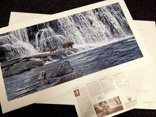 "RON PARKER  ""GRIZZLIES AT FALLS"" SN lithograph (Bear) 994 >30"" Ed 850 NIF"