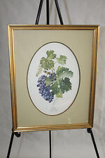 ANNE OPHELIA DOWDEN ARTIST GRAPE VINE GRAPES & LEAVES ON VINE FRAMED ART WINERY