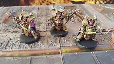 Warhammer 40k Death guard pro painted deathshroud garde du corps