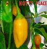 AJI HABANERO (Messico) 10 SEMI peperoncino sapore delicato aroma agrodolce