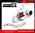 R 1100 GS Exhaust GP I Dominator Racing silencer muffler