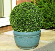 40CM GARDMAN ARTIFICIAL DECORATIVE TOPIARY BALL BUXUS LEAF EFFECT + CHAIN 02803