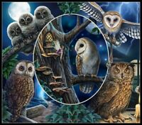 Magical Owl Montage - Chart Counted Cross Stitch Patterns Needlework DIY DMC