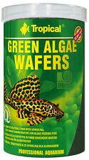 tropical vert Algae Catfish Plaquette 1000 ml Comprimés de nourriture WELS Chips