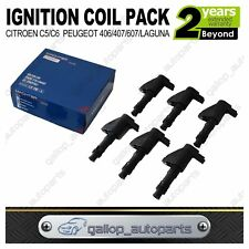 IgnItion Coil for Peugeot 406 407 607 Renault Laguna 6Cyl 2.9/3.0L Citroen C5 C6