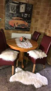ICELANDIC SHEEPSKIN Chair Car Motorcycle Seat COVER Dog Cat BED+DISCOUNT