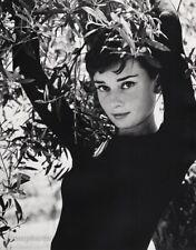 1950s Vintage AUDREY HEPBURN Movie Actress By PHILIPPE HALSMAN Photo Art 16x20