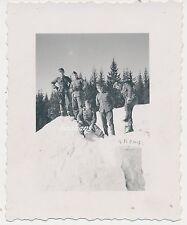 Foto Soldaten -Wehrmacht im Gebirge-Orden  2.WK (W488)