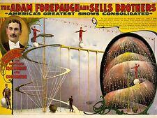 Art Imprimé Poster publicité culture événement Forepaugh vend Acrobat nofl1596