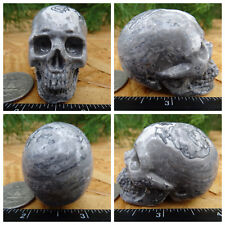 "2.02"" Chinese Crazy Lace Skull Carved Stone 3.6oz 101g Crystal Healing Realistic"