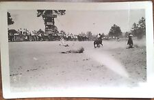 RPPC RP ARIZONA AZ CALF ROPING FRONTIER DAYS RODIO HORSES COW PRESCOTT 1932