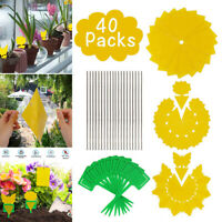 Dual-Sided Yellow Sticky Traps Paper Fruit Flying Plant Insect Fungus Gnats