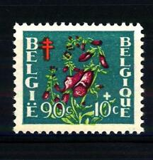 BELGIUM - BELGIO - 1950 - Pro opere antitubercolari
