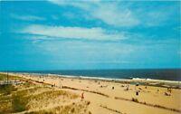 Delaware DE beaches Summer Scene Postcard