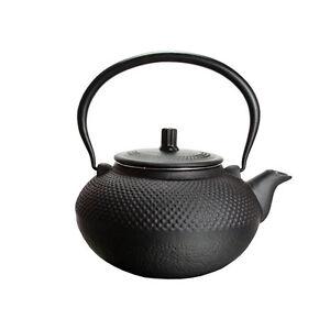 Asiatische Gusseisen Teekanne mit Teesieb 1,5 Liter Japanische Chinesische Kanne