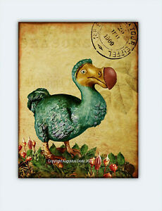 Vintage Dodo, ART PRINT  Alice in wonderland dodo bird, gift, wall art,