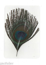 Laminated Bird Feather Indian Peacock in 11x7.5 cm sheet Learning Specimen