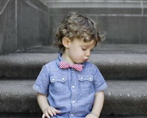Stinky McGee Baby Toddler Boy Stylish Neck Wear Bowties Holiday Red Gingham Bow