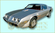 1978 1979 1980 Pontiac Firebird Trans Am (All but Hood Bird) Decals Stripes Kit