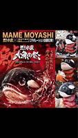 INSTINCTOY × MAMEMOYASHI Killer Whale Ver. BIG MAGURO SENPAI TOKYO COMIC CON