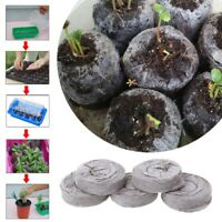 Jiffy Peat Pellets Seed Starting Plugs Seed Starter 30-45mm Pallet Seedling Soil