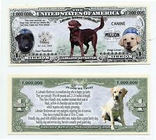 Labrador Retriever  & characteristics  MILLION   DOLLAR  BILL