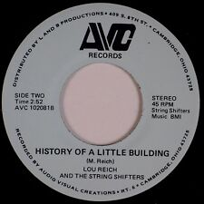 LOU REICH & STRING SHIFTERS: Little Building AVC Ohio Country Obscure 45 MP3